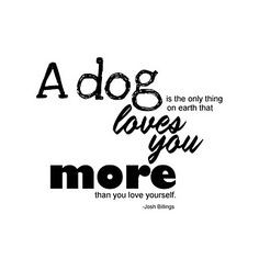 Dog quote More