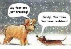 Funny Freezing Dog Cartoon Picture - My feet are just freezing! Buddy ...