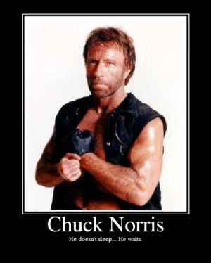 The Expendables 2 can be describe in one line (and funnily enough ...