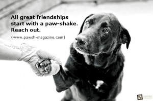 inspirational-dog-quotes-toronto-pet-photographer.jpg