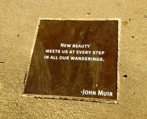 DS_The Best Things_John Muir Quote