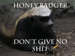 honey badger dont give a..