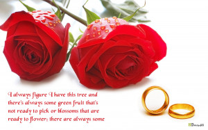 Red flowers quotes wallpapers