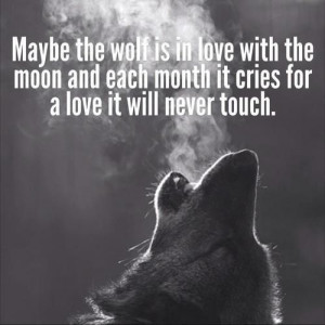 Wolf and Moon Quotes