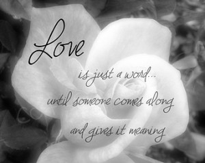 Showing Gallery For White Rose Pictures With Love Quotes