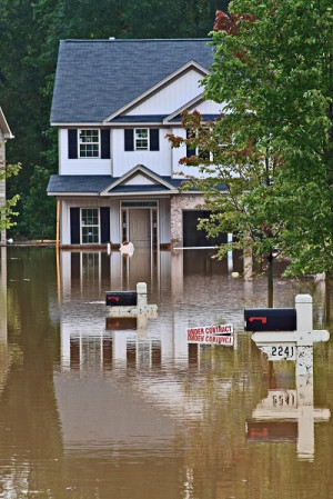 The Need for Effective Stormwater Management BMP in Residential Areas