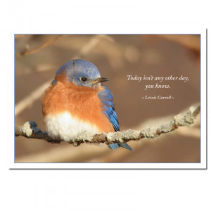 Photo of business birthday card with bluebird with Lewis Carroll ...
