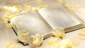 bible and roses 1366x768 pixel 212 kb jpg