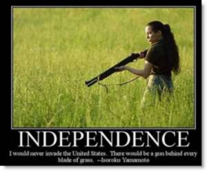 independence-gun-behind-every-blade-of-grass-poster
