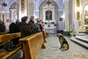... the church where his owner Maria Margherita Lochi's funeral was held