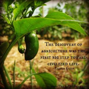 Terra Dei Farm - A Life of Stewardship