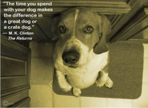 Sweet Dog Quotes Was Make a Dog Quote Photo