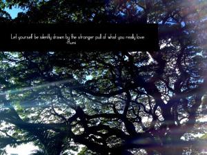 Rumi Quotes Rumi Quote Love