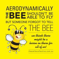 Bee quote #5