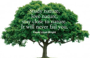 inspirational #nature #quotes #tentree #love