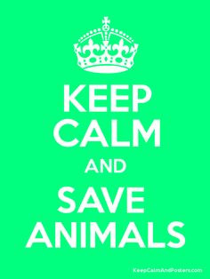 Save animals in the planet ♥ More