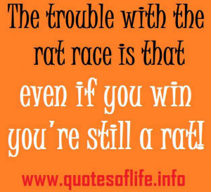 ... rat race is that even if you win you're still a rat - rat race quotes