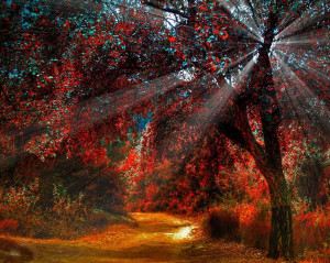... Autumn River Desktop Wallpaper and Autumn Leaves Desktop Wallpaper