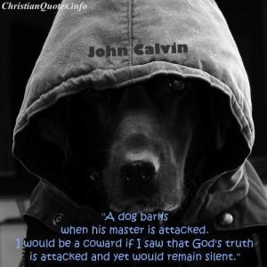 john calvin quote images john calvin quote truth being attacked