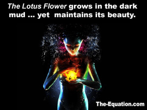 Lotus Flower - From The Equation book by James Tarantin