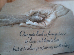 quotes dogs animal pets loss quotes fun pets lead losing a pet quotes ...