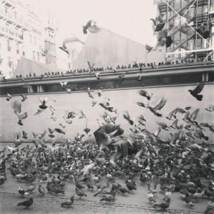 ... anime, un rien la mine, un rien l'emmène. » Raymond Queneau #quotes