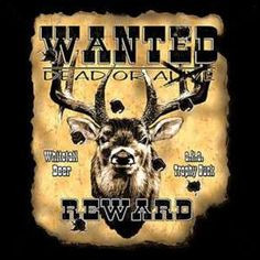 Funny Deer Hunting Quotes | Artist Picture Of A Funny Deer | Search ...