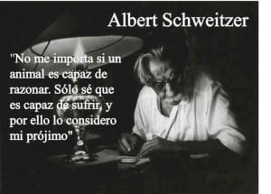 ... Quotes, Albert Schweitzer, Phrases Knew, Importa Si, Maltrato Animal