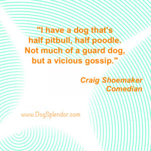 filed under quotes about dogs tagged with quotes