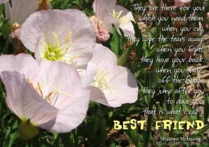 girls best friend poems