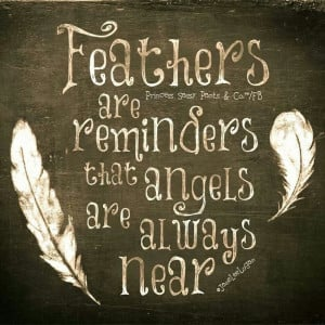 """This adage refers to feathers as the """"calling card"""" of angels ..."""
