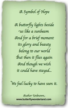 Butterfly Poems & Quotes