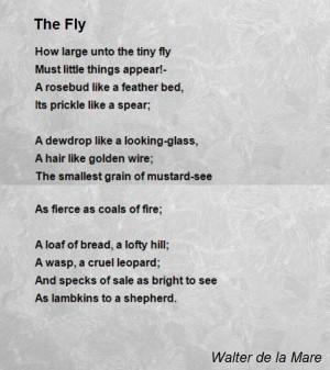 the-fly-13.jpg