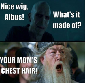 16 hysterical 'Harry Potter' and 'Mean Girls' mash-up memes