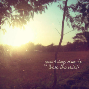 photography, quote, sun, trees, vintage