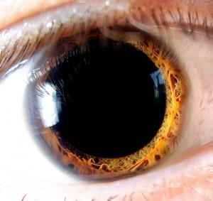 Feeling a little beat up; Eye doctor yesterday, trying new lenses.