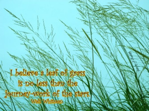 believe a leaf of grass is no less than the journey work of the ...