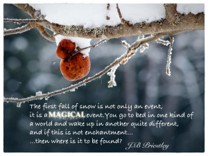 First+Snow+Fall+Quote.jpg