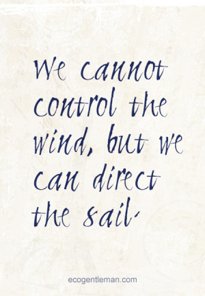 ... but we can direct the sail - graphic quotes design by Eco Gentleman