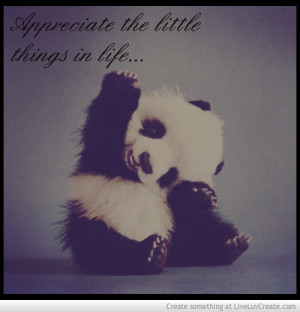 appreciate_the_little_things-581145.jpg?i