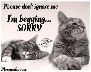 Please don't ignore me