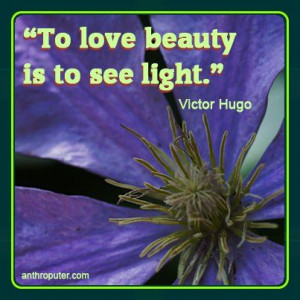 To love beauty is to see light -Victor Hugo #quote