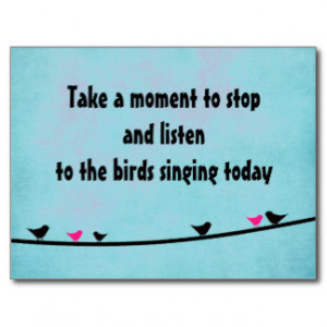 Cute birds singing postcard