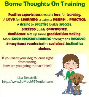 negative-reinforcement-examples-dog-training Clinic