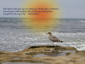 of-cute-little-duck-with-nice-quote-about-life-nice-quotes-about-life ...