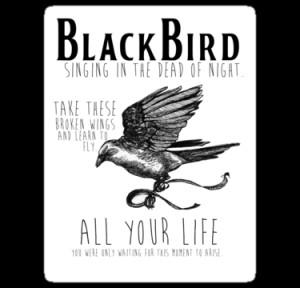 ... › Portfolio › Blackbird The Beatles Minimalist Typography Tee