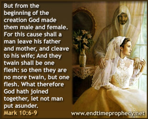 Biblical Marriage / Divorce / Adultery Graphic 05