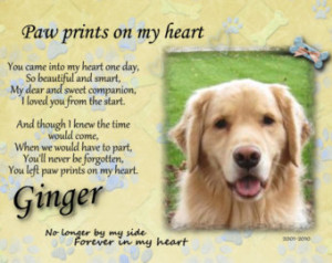 Paw prints on my heart Pet memorial photo dog cat Pet memorial ...
