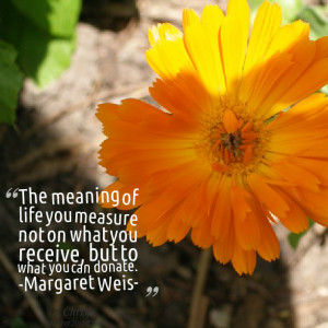 Quotes Picture: the meaning of life you measure not on what you ...
