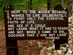 Quote from Walden by Henry David Thoreau.